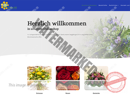 Meyer Söhne AG - Onlineshop